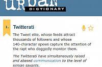 Twitterati – Big Fish, Little Pond?